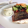Grilled barramundi and salad